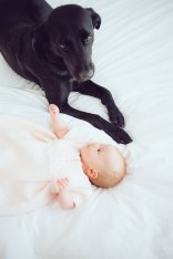 storm and baby bed 2